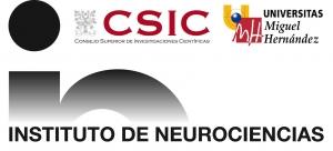Logo IN Compuesto 2009